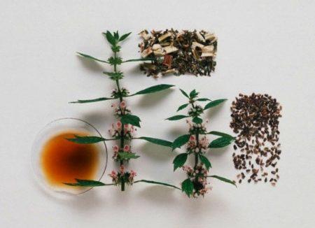 Части травы для заваривания чая